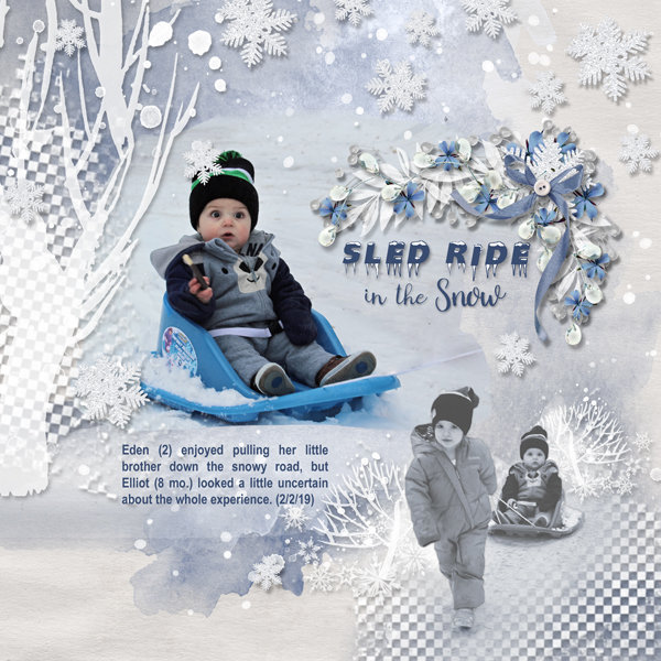 Sled Ride in the Snow