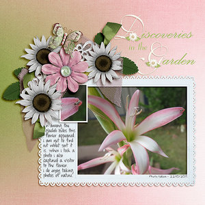 November Slow Scrap #1 - Discoveries in the Garden