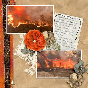 WWNov16-Recipe_Bush Fires