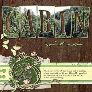 Cabin View PL20-3