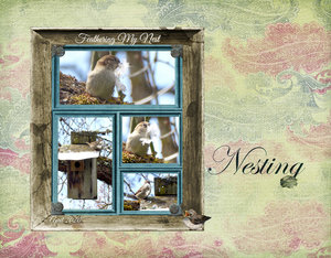 April-monthly-#4-Feathering-My-Nest
