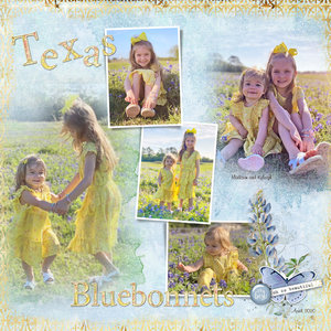 April Monthly Challenge #2 One Color: Yellow Texas Bluebonnets
