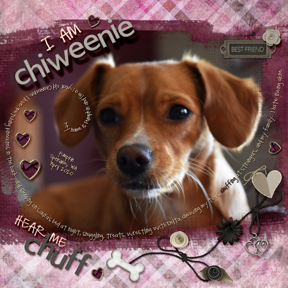 I Am Chiweenie, Hear Me Chuff (journaling challenge)