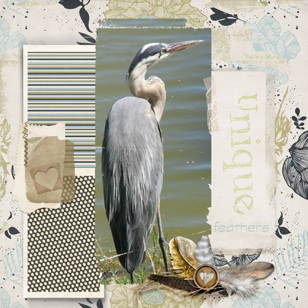 Weekend-Wildcard-Challenge--papers-heron