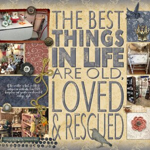 Loved and Rescued