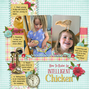 How to Raise an Intelligent Chicken