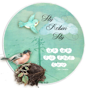 aug_atc_kelly_fly_robin_fly