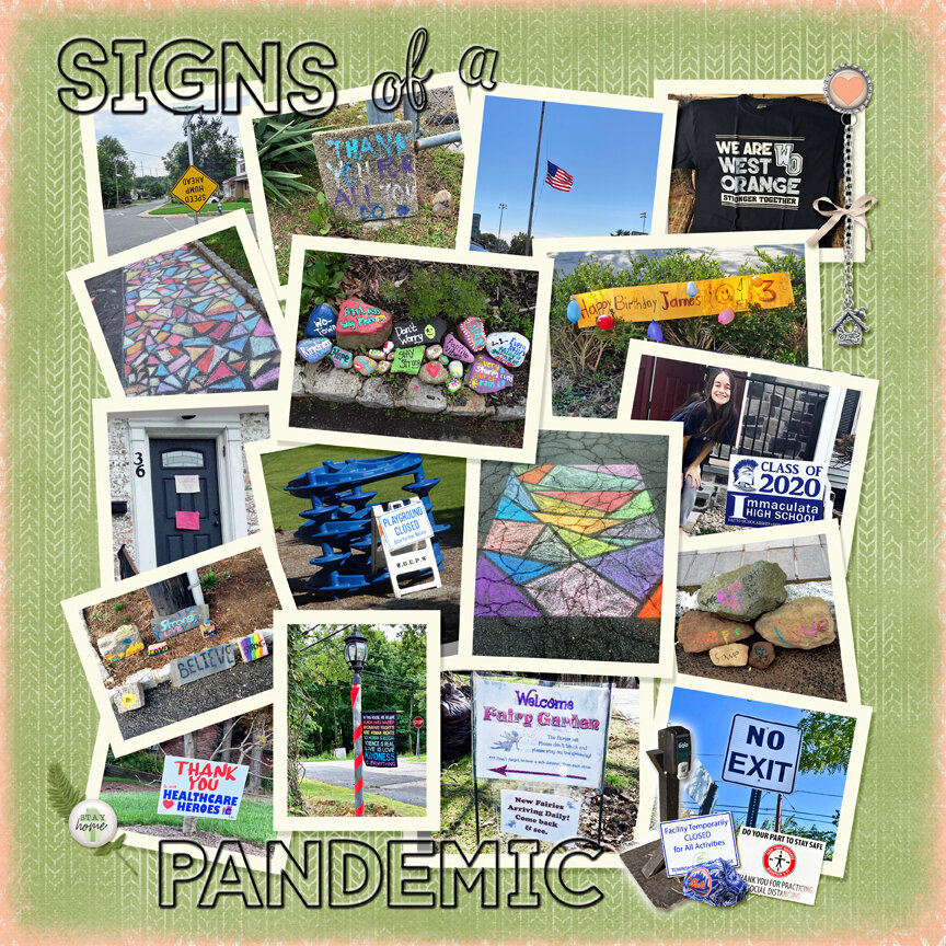 Signs of a Pandemic - PL 2020 Corona Virus Book