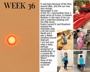 Project Life Week 36