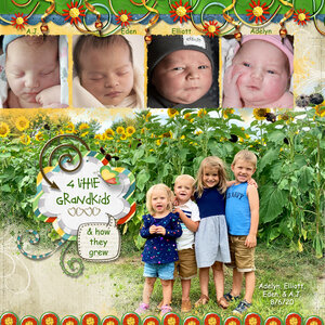4 Little Grandkids & How They Grew