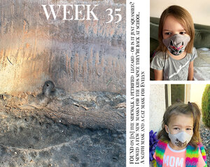 Project Life Week 35