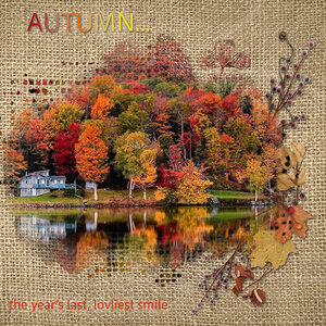 Newsletter-Autumn-Colors