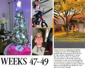 Project life week #47-50