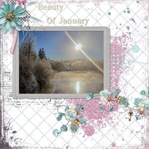 The Beauty of January