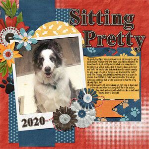 RYLEE-SITTING-PRETTY.jpg