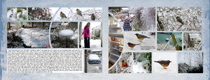 Project-Life-2021-February-page-5-6