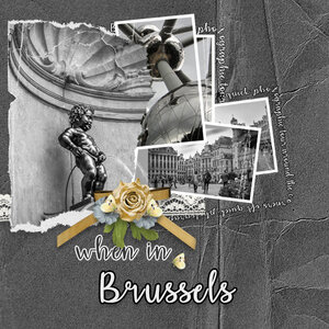 Taking a look at Brussels