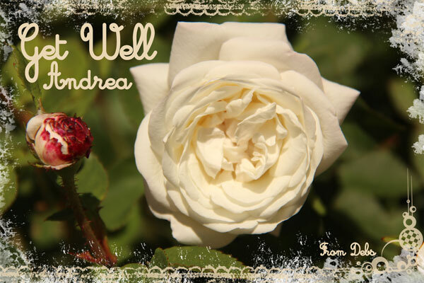 Get-well-Andrea