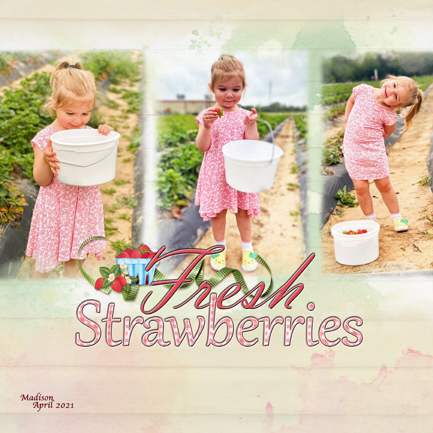Tues Challenge 8/17/21: Photo Series - Strawberry Picking