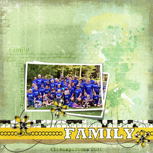 monthly_aug_dupicate_3_family