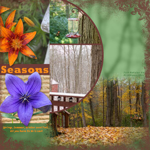 Spring, Summer, Winter & Fall at our House