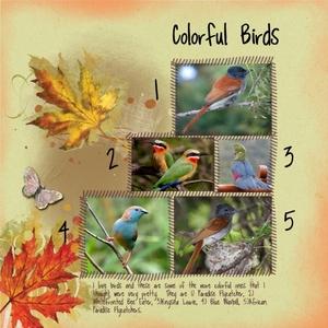 Colorful Birds -- Saturday 11-22-14 Challenge