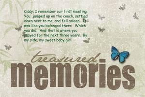 Gratitude Day 43 -- Treasured Memories