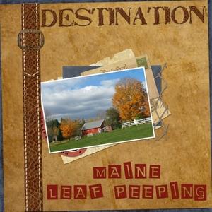 DSD - Color Challenge - Leaf Peeping