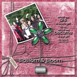 Blossom & Bloom