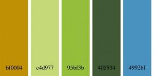 DSD_Color Challenge