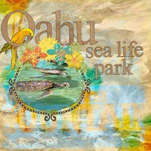 Ohau sea life park