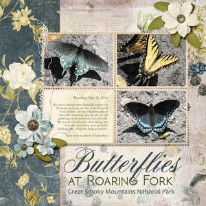 Weekend Wildcard 8 27 Butterflies