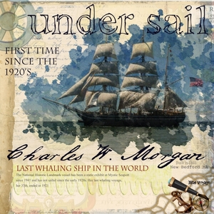 Charles W. Morgan Under Sail