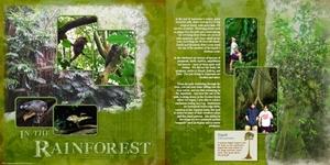 Amazonia's Rainforest