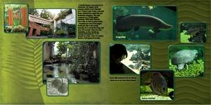 Amazonia Aquarium, 2 page spread