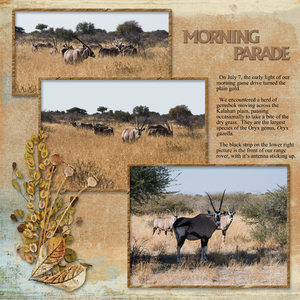 Morning Parade - left page