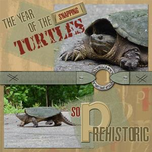 The Year of the Snapping Turtles Page 1
