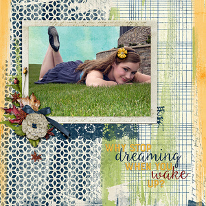 Why Stop Dreaming...