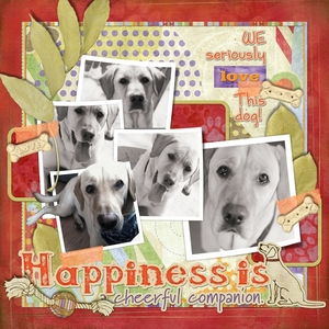 We love this DOG!