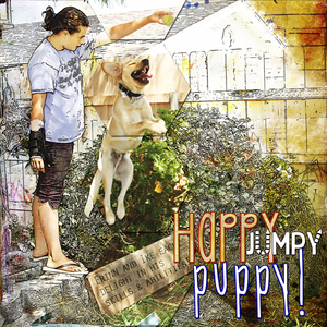 Happy Jumpy Puppy!