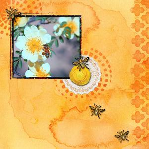 Busy Bee.jpg