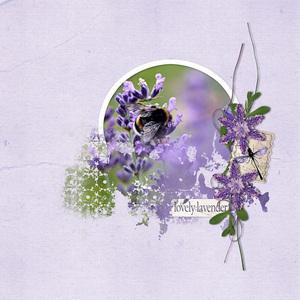 In The Lavender.jpg