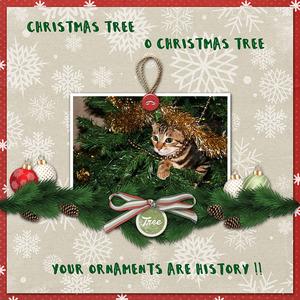 Christmas Meme.jpg