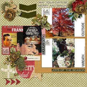 December Photo Challenge Day Dec 7-9