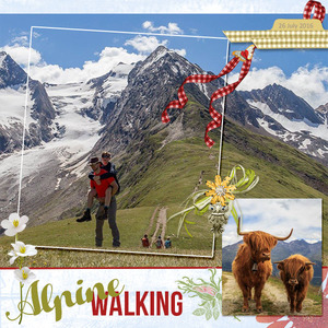 Alpine Walking