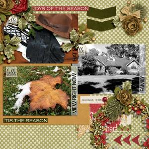 December Photo Challenge Day Dec 28-30