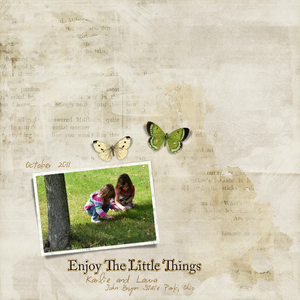 Little Things (White Space)