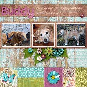 Buddy Walking_600