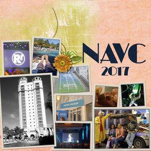 NAVC2018_600_L