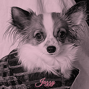 JAZZY-Duo Tone 15th Ann. Chat.jpg